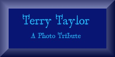 Terry Taylor, A Photo Tribute